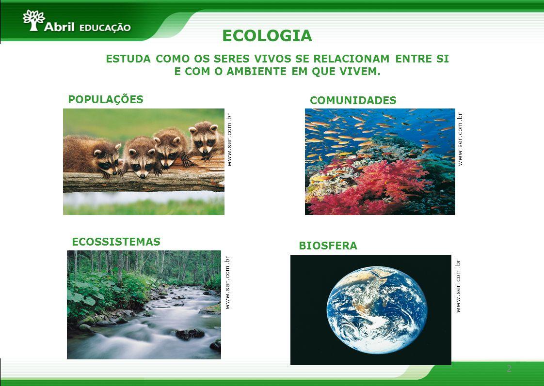 2 ECOLOGIA ESTUDA COMO OS SERES VIVOS SE RELACIONAM ENTRE SI E COM O AMBIENTE EM QUE VIVEM. POPULAÇÕES COMUNIDADES BIOSFERA www.ser.com.br ECOSSISTEMA