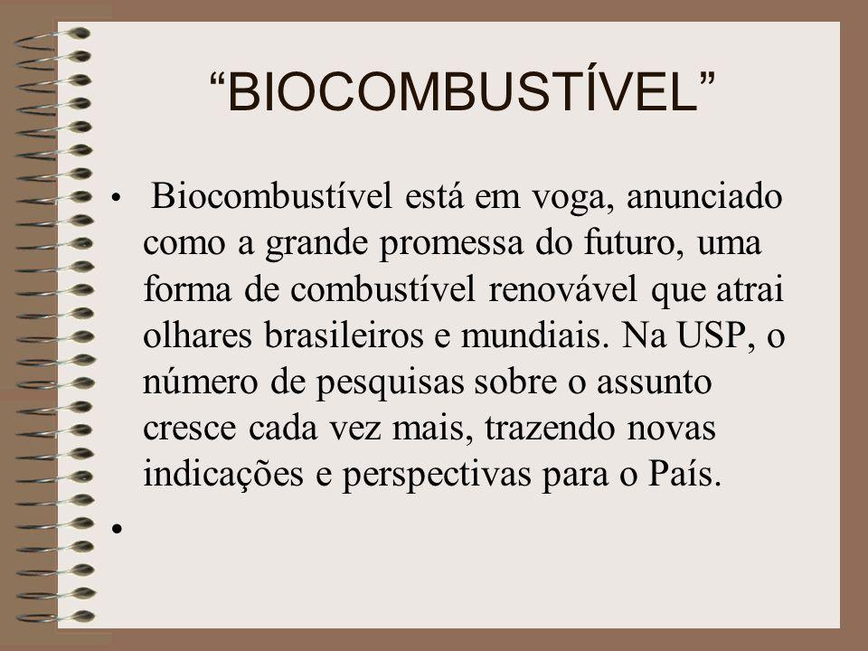 BIOCOMBUSTÍVEL Biocombustível está em voga, anunciado como a grande promessa do futuro, uma forma de combustível renovável que atrai olhares brasileir