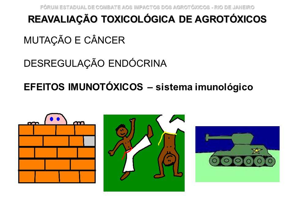 Instituto Nacional de Controle de Qualidade em Saúde 29 FÓRUM ESTADUAL DE COMBATE AOS IMPACTOS DOS AGROTÓXICOS - RIO DE JANEIRO REAVALIAÇÃO TOXICOLÓGI