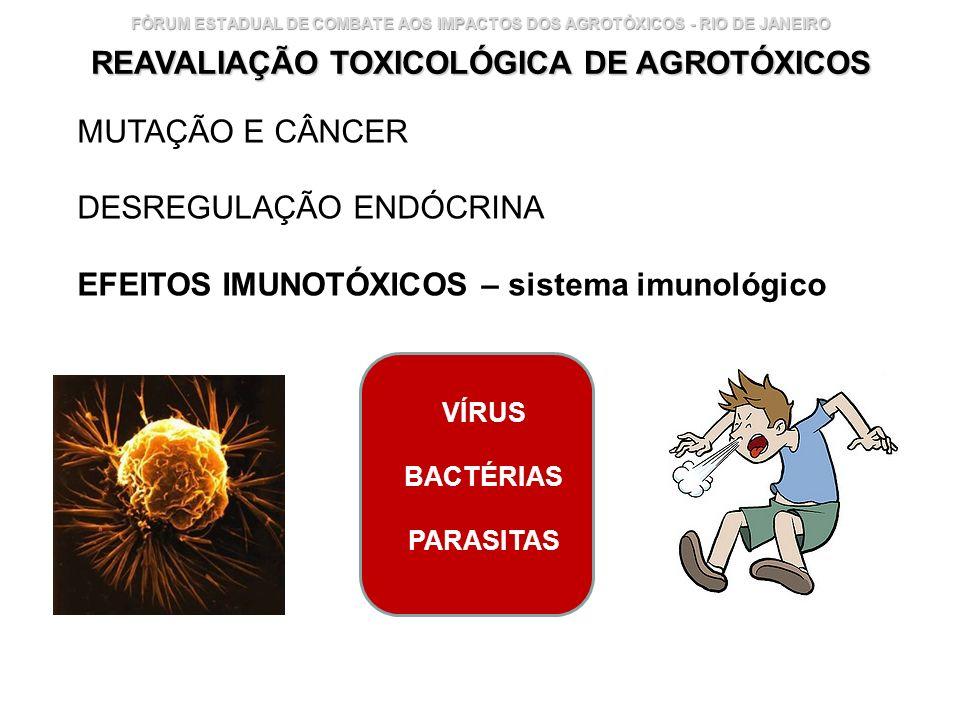 Instituto Nacional de Controle de Qualidade em Saúde 30 FÓRUM ESTADUAL DE COMBATE AOS IMPACTOS DOS AGROTÓXICOS - RIO DE JANEIRO REAVALIAÇÃO TOXICOLÓGI
