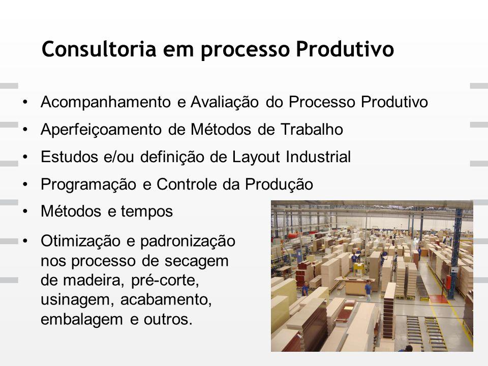 Consultoria em processo Produtivo Acompanhamento e Avaliação do Processo Produtivo Aperfeiçoamento de Métodos de Trabalho Estudos e/ou definição de La