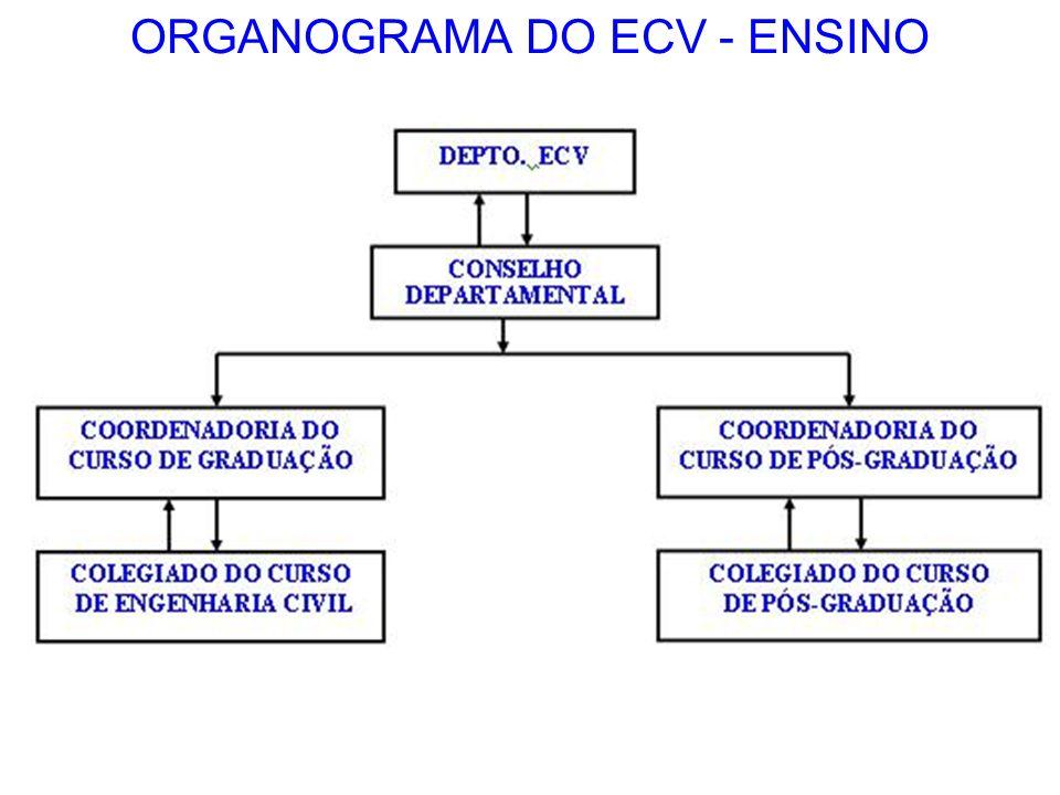 ORGANOGRAMA DO ECV - ENSINO