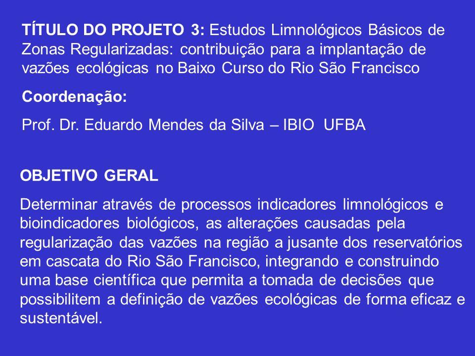 TÍTULO DO PROJETO 3: Estudos Limnológicos Básicos de Zonas Regularizadas: contribuição para a implantação de vazões ecológicas no Baixo Curso do Rio S
