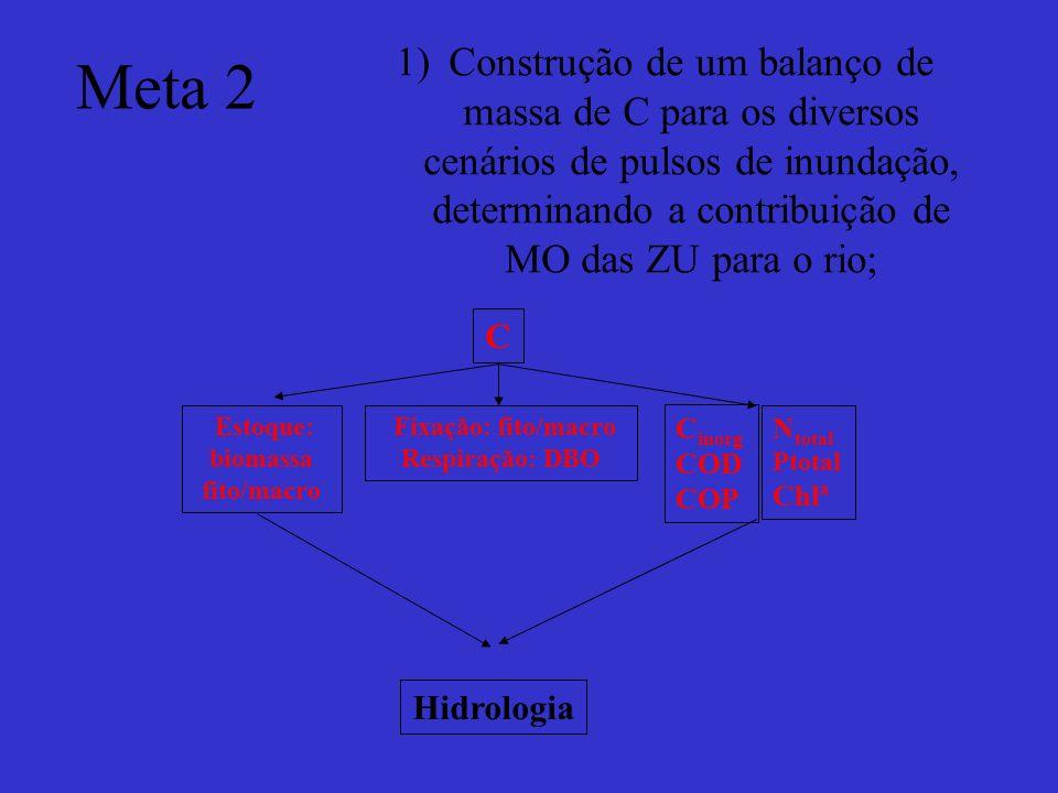 Meta 2 1)Construção de um balanço de massa de C para os diversos cenários de pulsos de inundação, determinando a contribuição de MO das ZU para o rio;