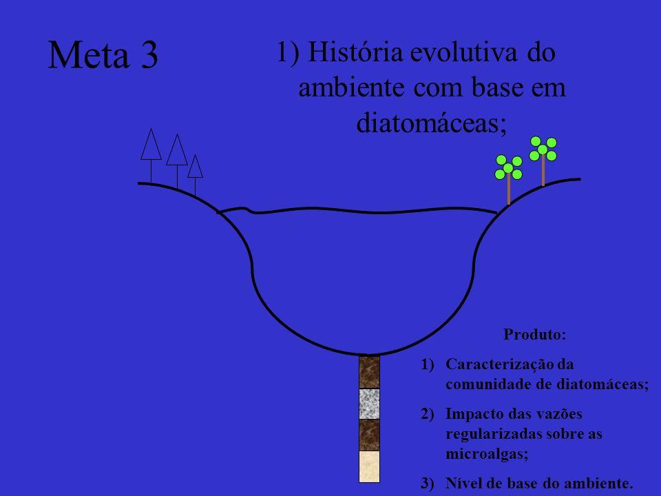 Meta 3 1)História evolutiva do ambiente com base em diatomáceas; Produto: 1)Caracterização da comunidade de diatomáceas; 2)Impacto das vazões regulari
