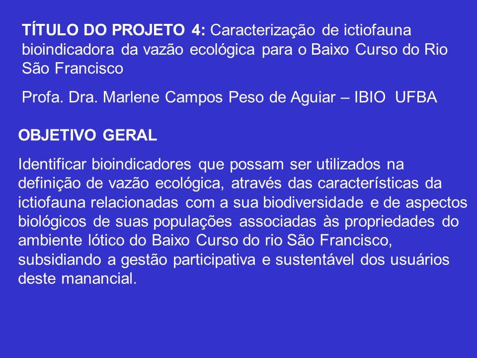 TÍTULO DO PROJETO 4: Caracterização de ictiofauna bioindicadora da vazão ecológica para o Baixo Curso do Rio São Francisco Profa. Dra. Marlene Campos