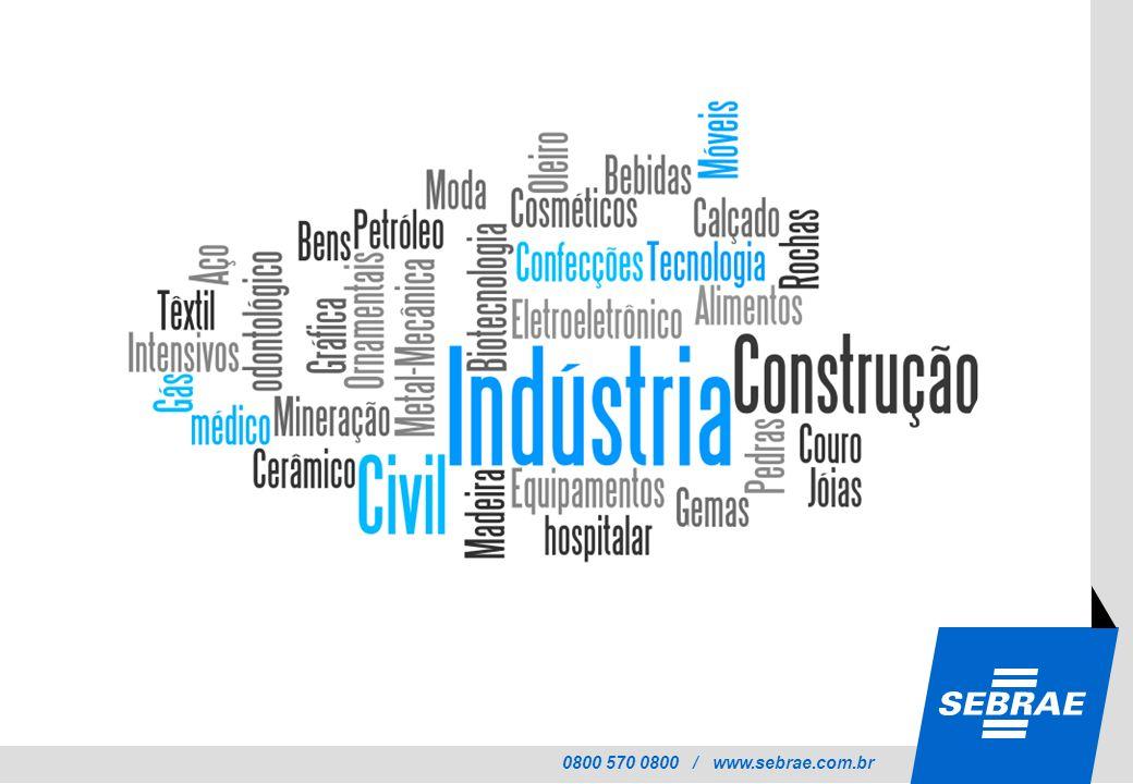 SEBRAE APLEP Rede de APL Associação Cooperativas Consórcio Núcleos Setoriais Grupo de Empresas Franquias Formas de Atuação