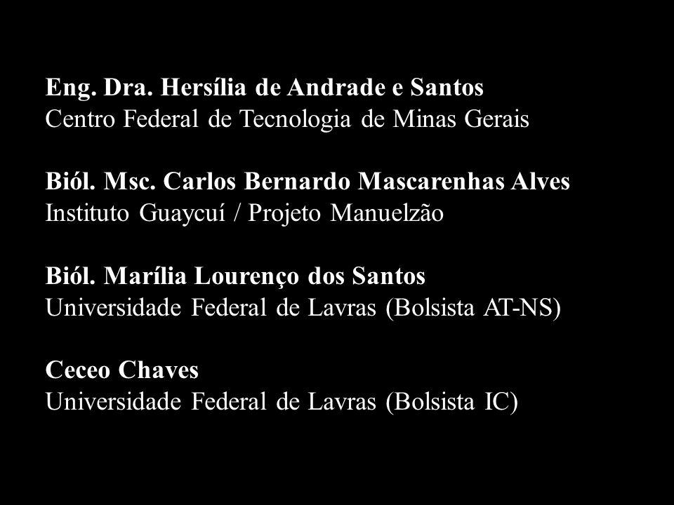 Eng. Dra. Hersília de Andrade e Santos Centro Federal de Tecnologia de Minas Gerais Biól. Msc. Carlos Bernardo Mascarenhas Alves Instituto Guaycuí / P