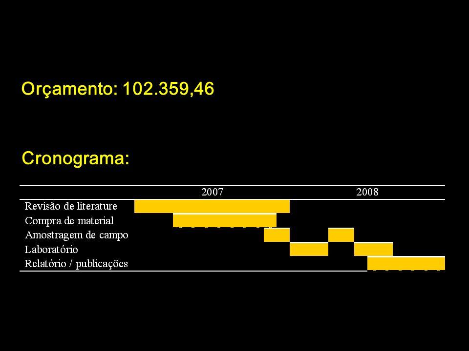 Orçamento: 102.359,46 Cronograma: