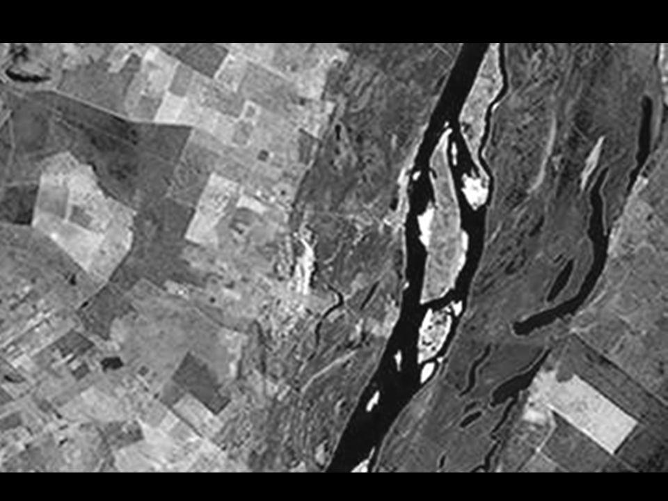 OBJETIVO GERAL Comparar a estrutura da comunidade de peixes de lagoas do baixo curso do São Francisco, com outros dois sistemas de lagoas já estudados na bacia do São Francisco, a fim de avaliar a extensão do impacto da regularização do rio sobre a fauna de peixes, bem como auxiliar na estimativa da necessidade de uma mínima vazão de cheia que deveria ser liberada pelos reservatórios a montante.