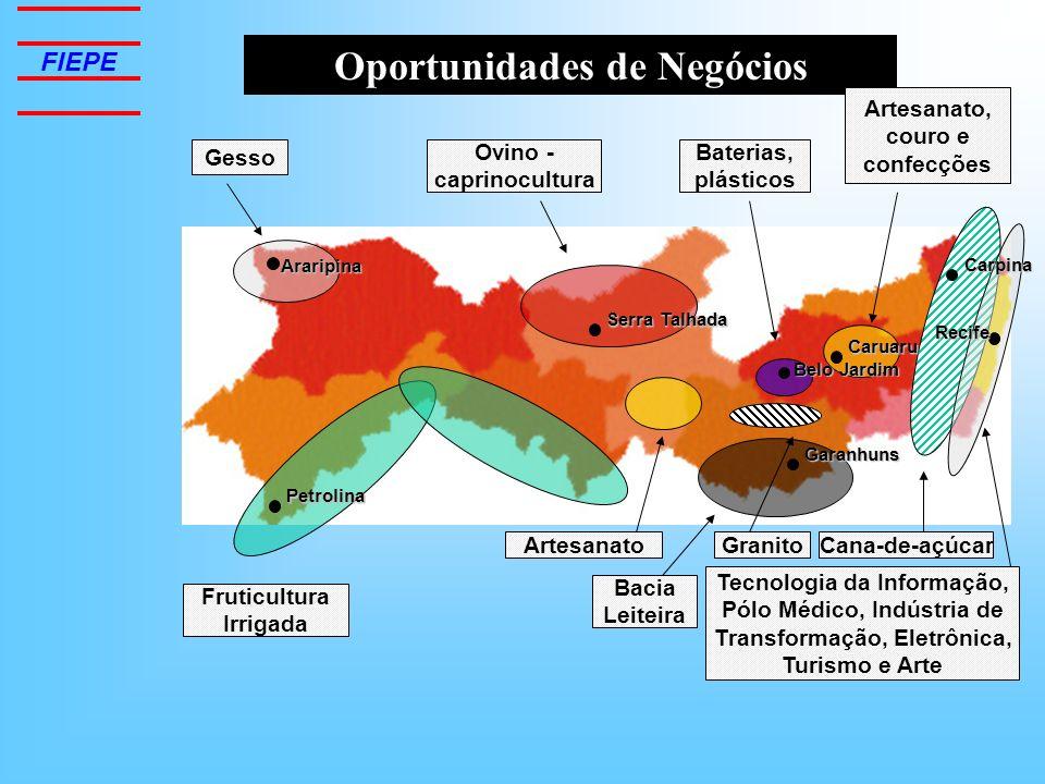 Oportunidades de Negócios Petrolina Recife Araripina Belo Jardim Serra Talhada Garanhuns Carpina Caruaru Gesso Ovino - caprinocultura Baterias, plásti