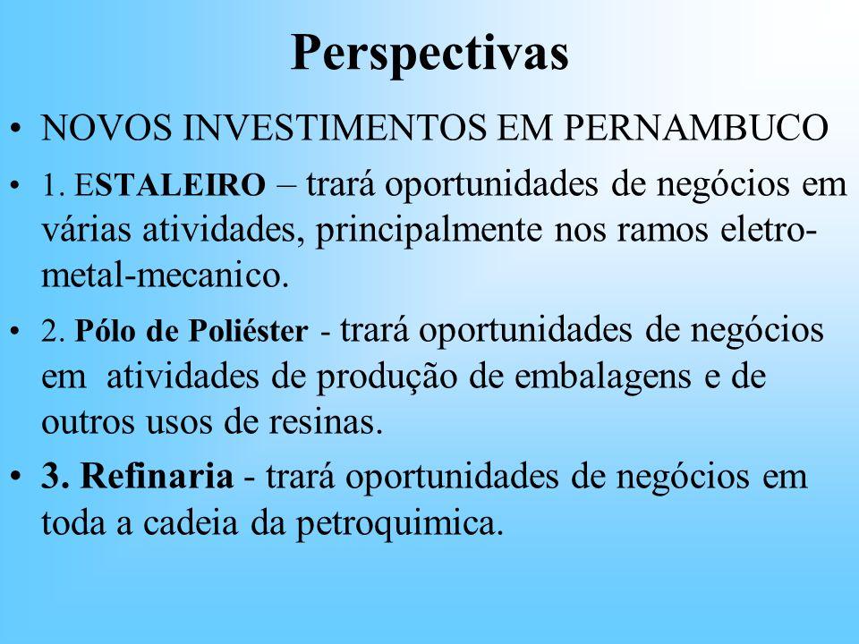 Perspectivas NOVOS INVESTIMENTOS EM PERNAMBUCO 1. ESTALEIRO – trará oportunidades de negócios em várias atividades, principalmente nos ramos eletro- m