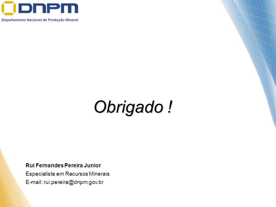 Obrigado ! Rui Fernandes Pereira Junior Especialista em Recursos Minerais E-mail: rui.pereira@dnpm.gov.br