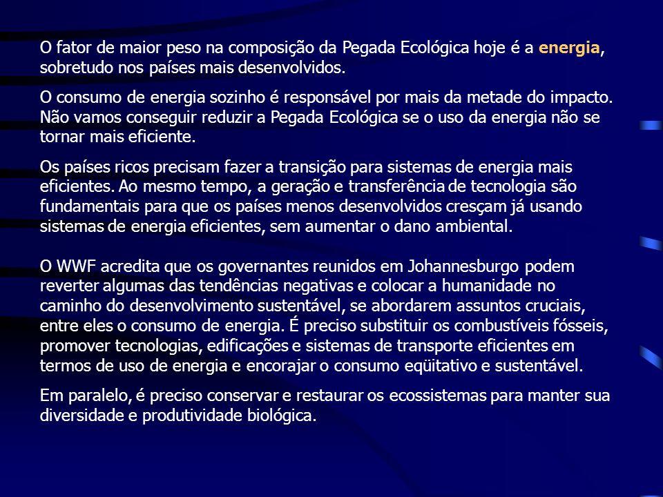 O fator de maior peso na composição da Pegada Ecológica hoje é a energia, sobretudo nos países mais desenvolvidos.