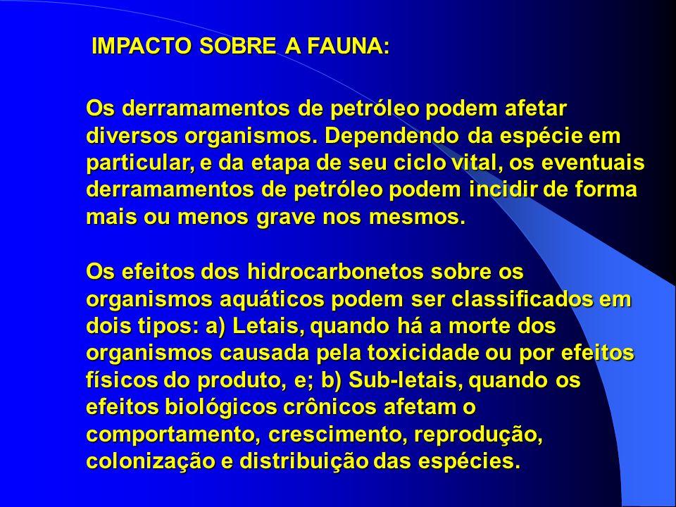 Os derramamentos de petróleo podem afetar diversos organismos.