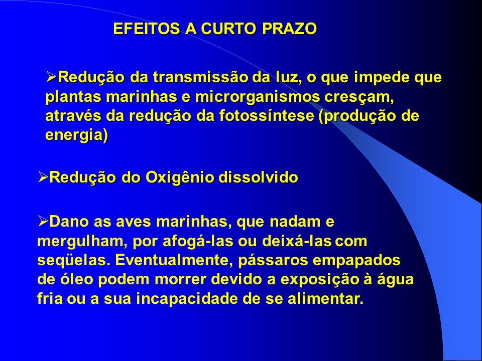IMPACTOS SÓCIO–ECONÔMICOS: Os principais impactos sócio-econômicos causados por derramamentos de óleo no mar são: a) os derivados dos prejuízos financ