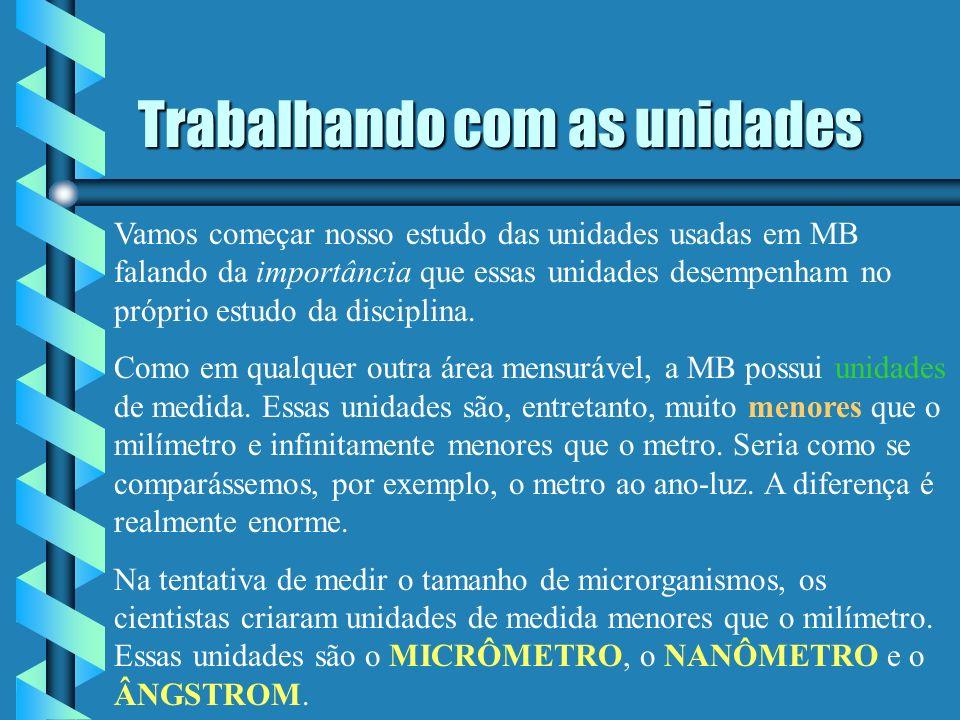 CONVERSÃO DE UNIDADES DE MEDIDA EM MB Micrômetro Nanômetro Ângstrom Fernando Santiago dos Santos
