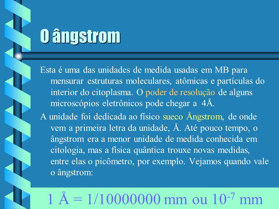O nanômetro Analogamente ao micrômetro, o nanômetro é uma unidade de medida bastante usada em MB e, particularmente, em microscopia eletrônica. Bactér