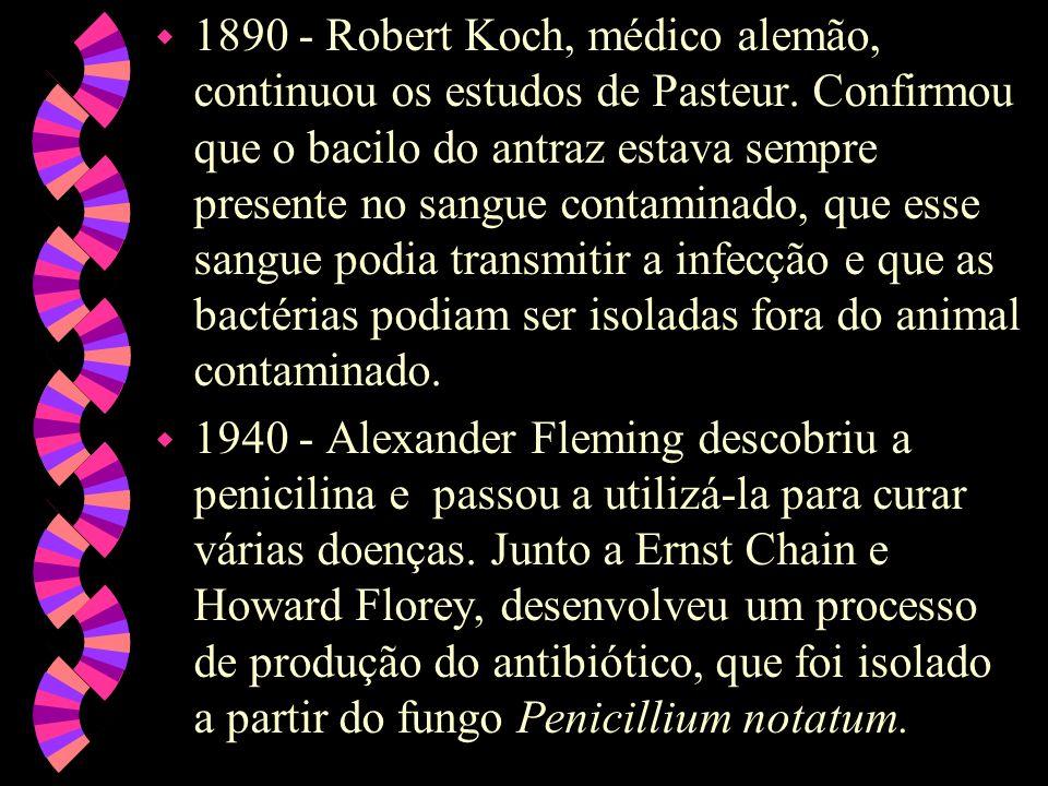 w 1890 - Robert Koch, médico alemão, continuou os estudos de Pasteur.