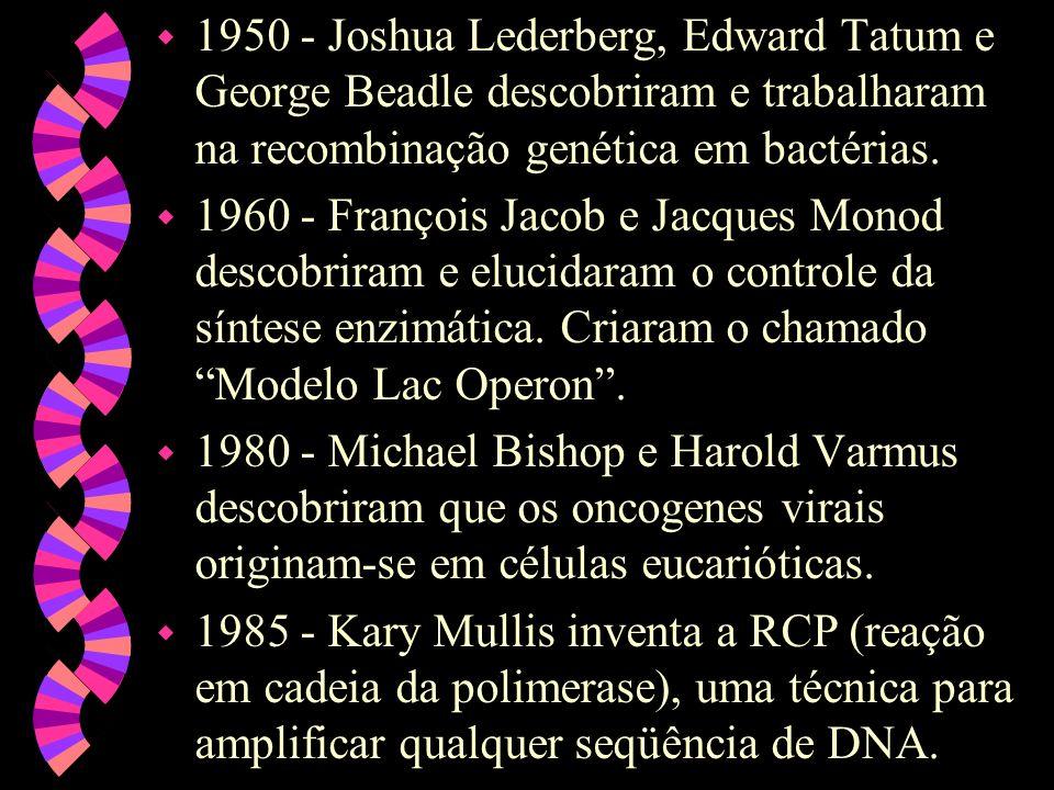 w 1950 - Joshua Lederberg, Edward Tatum e George Beadle descobriram e trabalharam na recombinação genética em bactérias.
