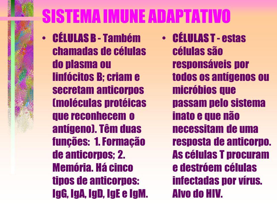 O SISTEMA IMUNOLÓGICO O sistema imunológico (ou sistema imune) é dividido, classicamente, em sistema imune adaptativo (SIA) e sistema imune inato (SII