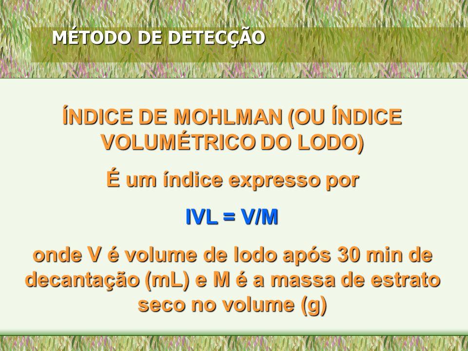 MÉTODO DE DETECÇÃO ÍNDICE DE MOHLMAN (OU ÍNDICE VOLUMÉTRICO DO LODO) É um índice expresso por IVL = V/M onde V é volume de lodo após 30 min de decanta