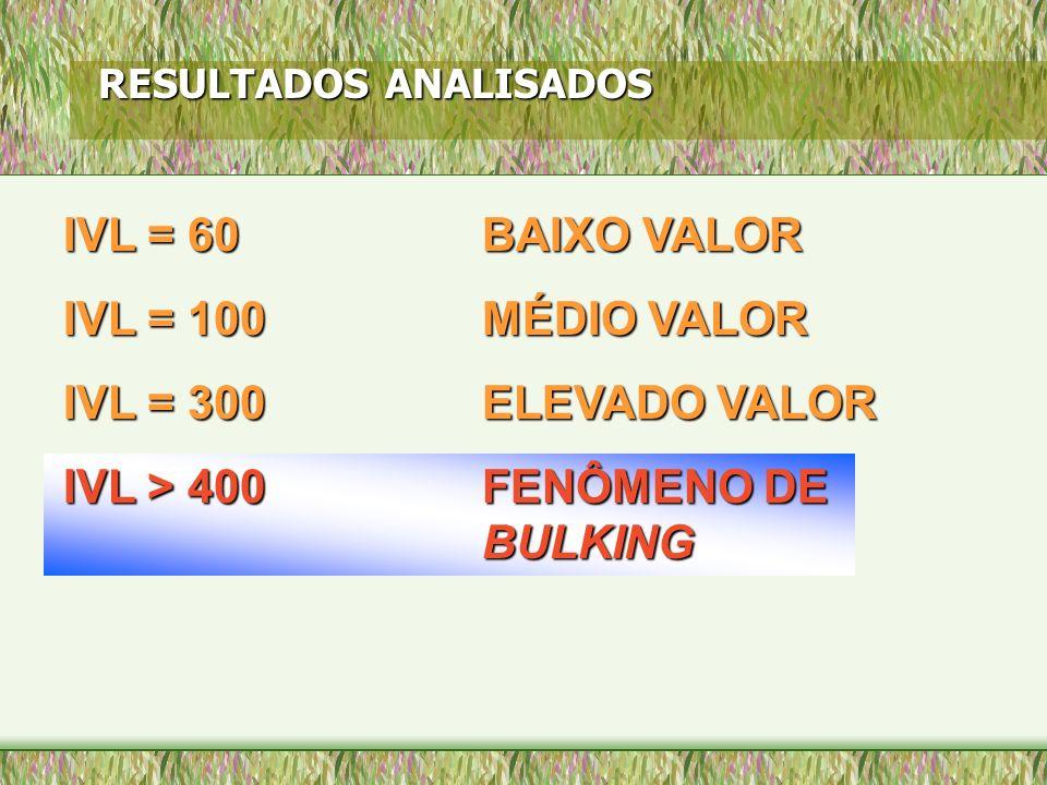 RESULTADOS ANALISADOS IVL = 60 BAIXO VALOR IVL = 100MÉDIO VALOR IVL = 300 ELEVADO VALOR IVL > 400FENÔMENO DE BULKING