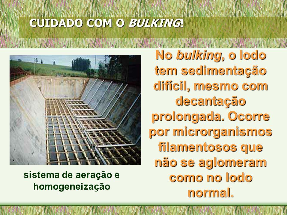 O bulking ocorre devido à natureza de certos efluentes industriais e pode ser contornado por manobras operacionais.