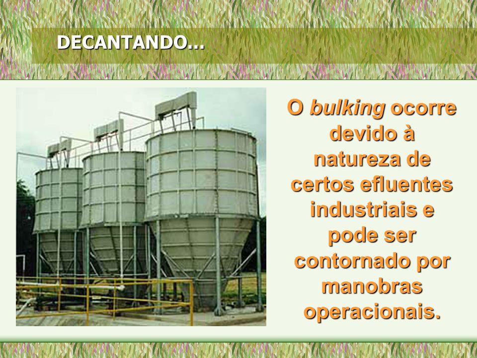 O bulking ocorre devido à natureza de certos efluentes industriais e pode ser contornado por manobras operacionais. DECANTANDO...