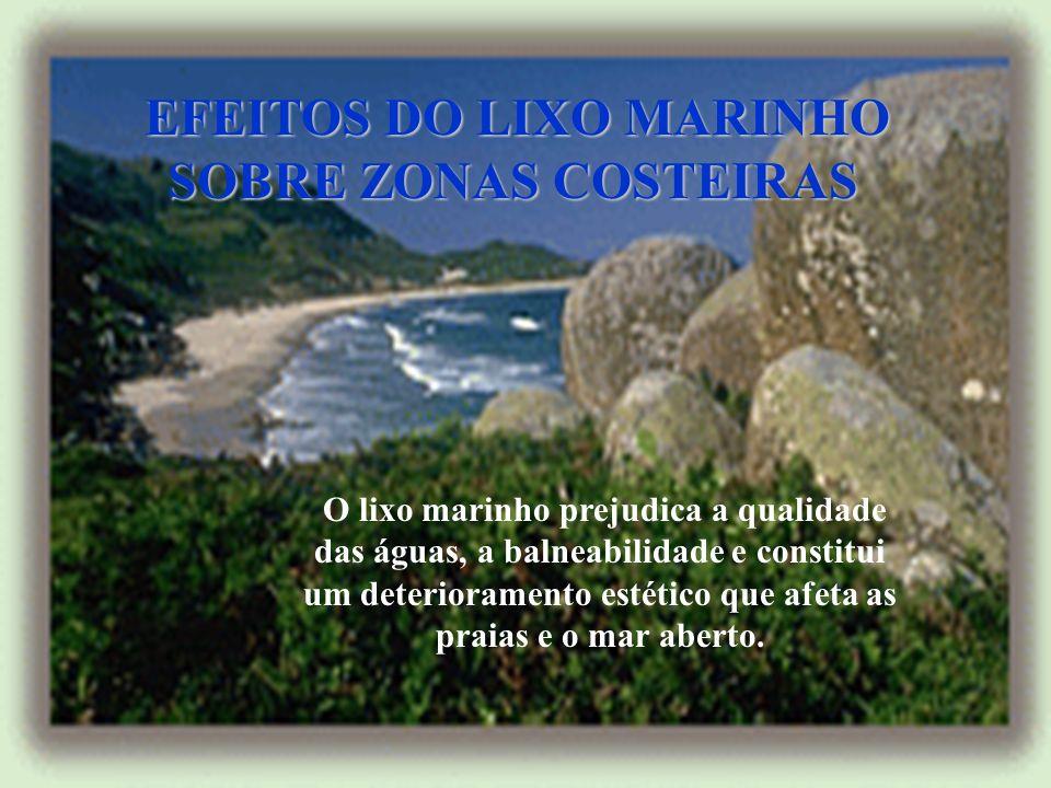 EFEITOS DO LIXO MARINHO SOBRE ZONAS COSTEIRAS EFEITOS DO LIXO MARINHO SOBRE ZONAS COSTEIRAS O lixo marinho prejudica a qualidade das águas, a balneabilidade e constitui um deterioramento estético que afeta as praias e o mar aberto.