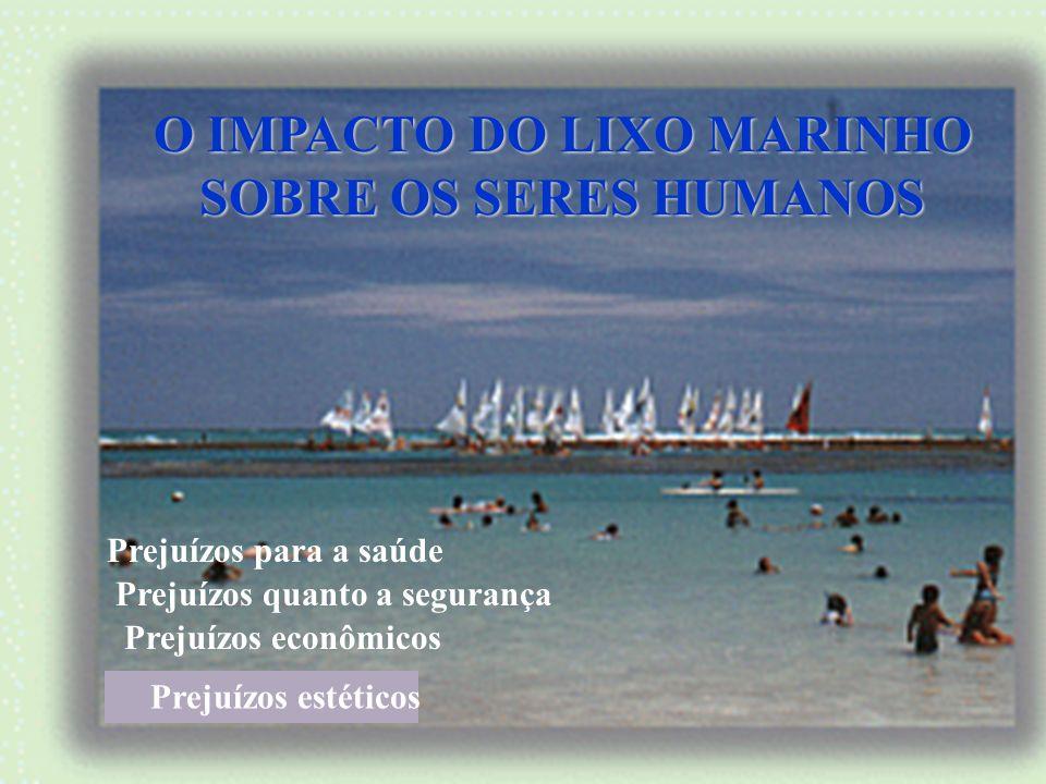 Os mamíferos marinhos, tartarugas, aves, peixes e crustáceos são afetados ao ingerir lixo ou ficarem presos nele. A poluição afeta a reprodução e o de