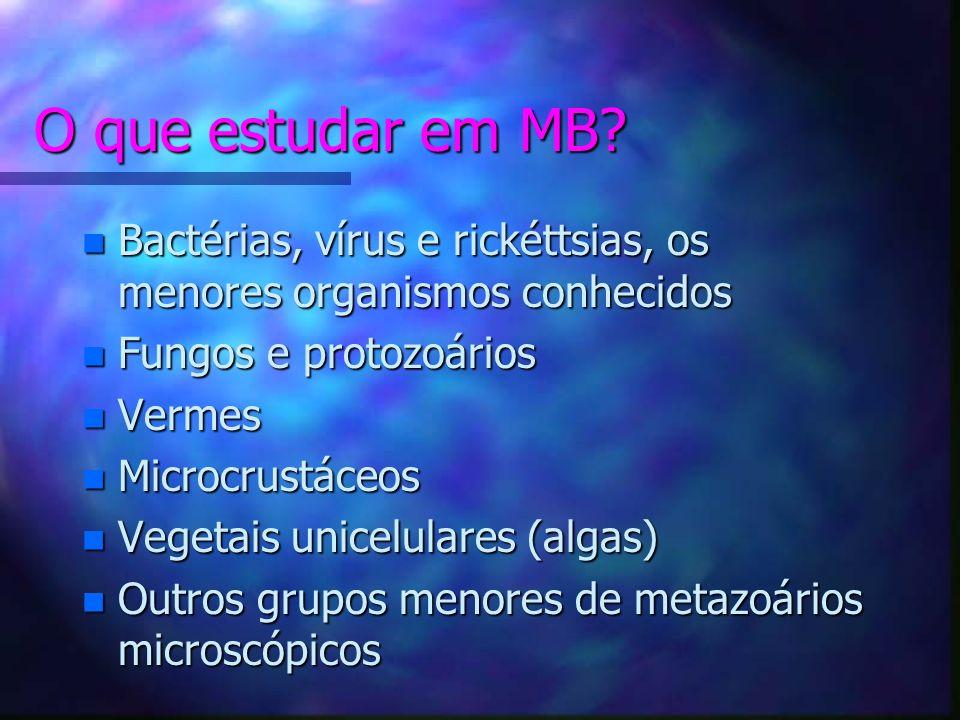 O que estudar em MB.