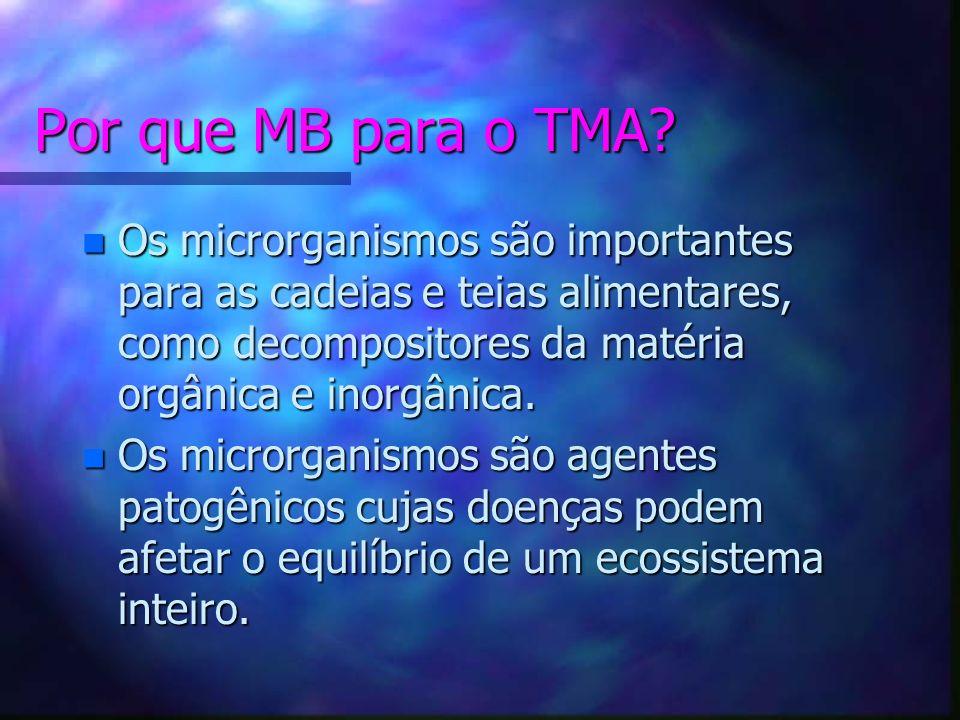 O que estudar em MB? n Bactérias, vírus e rickéttsias, os menores organismos conhecidos n Fungos e protozoários n Vermes n Microcrustáceos n Vegetais