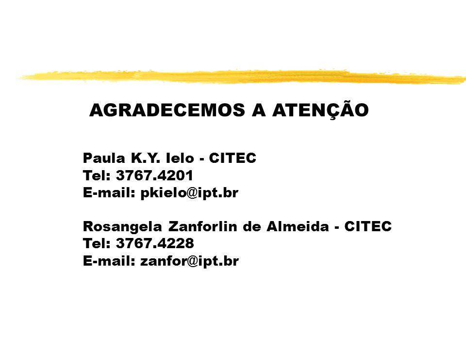 AGRADECEMOS A ATENÇÃO Paula K.Y. Ielo - CITEC Tel: 3767.4201 E-mail: pkielo@ipt.br Rosangela Zanforlin de Almeida - CITEC Tel: 3767.4228 E-mail: zanfo