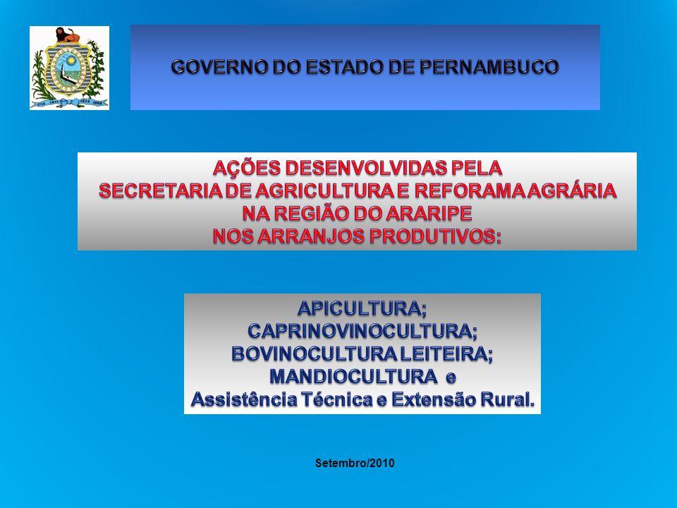 ARRANJO PRODUTIVO APICULTURA REGIÃO DO ARARIPE ARRANJO PRODUTIVO APICULTURA Projetos em andamento situação em (20/08/2010) PROJETO/METAS VALOR INVESTIMENTO R$ 1,00 ESTÁGIO ATUALFONTES/convênio Fortalecimento da Cadeia Produtiva da Apicultura da Mesorregião do Araripe (Municípios: Araripina, Trindade, Ouricuri e Bodocó).