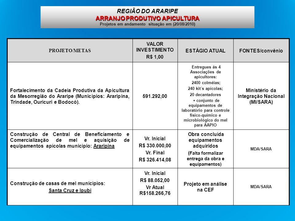 ARRANJO PRODUTIVO APICULTURA REGIÃO DO ARARIPE ARRANJO PRODUTIVO APICULTURA Projetos em andamento situação em (20/08/2010) PROJETO/METAS VALOR INVESTI