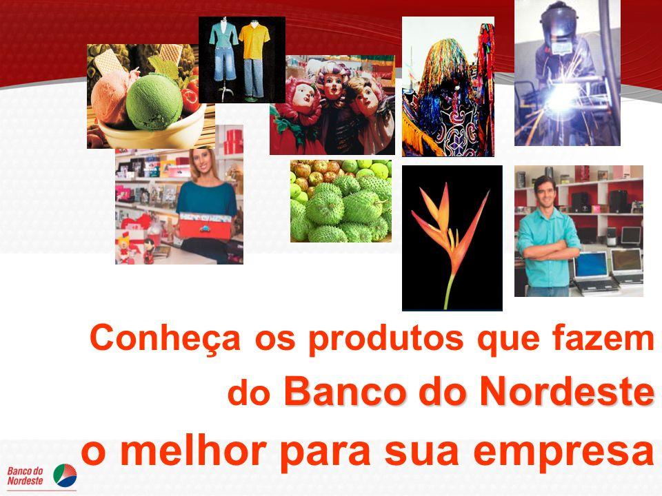 Conheça os produtos que fazem Banco do Nordeste do Banco do Nordeste o melhor para sua empresa