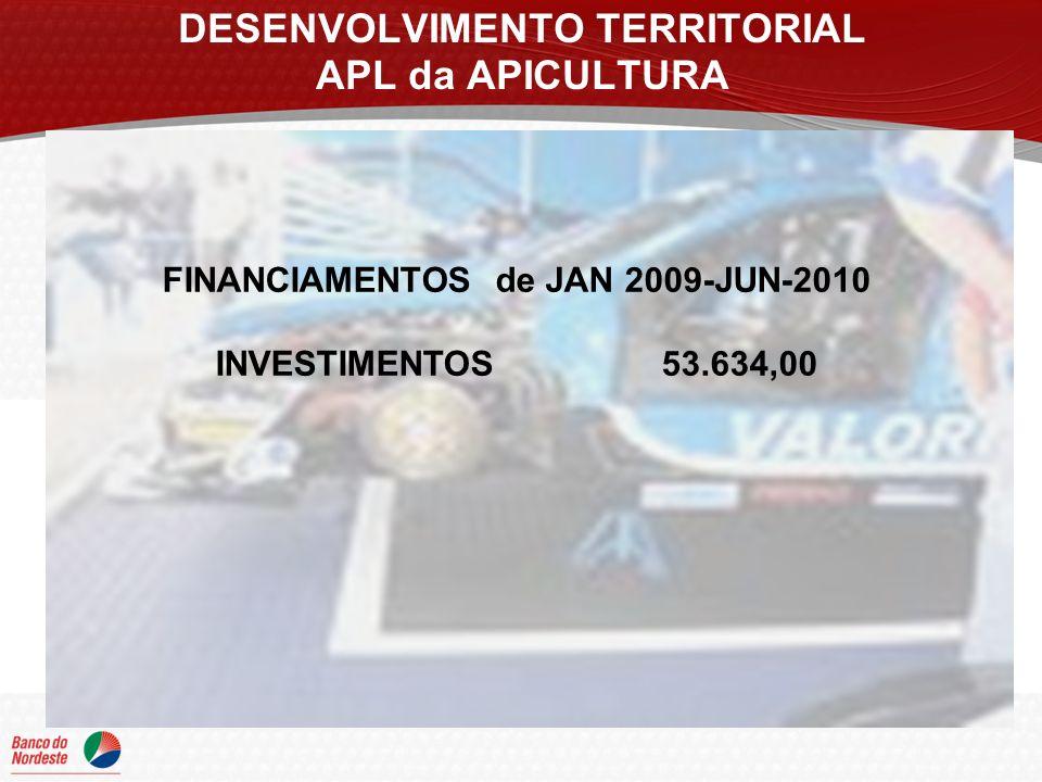 DESENVOLVIMENTO TERRITORIAL APL da APICULTURA FINANCIAMENTOS de JAN 2009-JUN-2010 INVESTIMENTOS 53.634,00