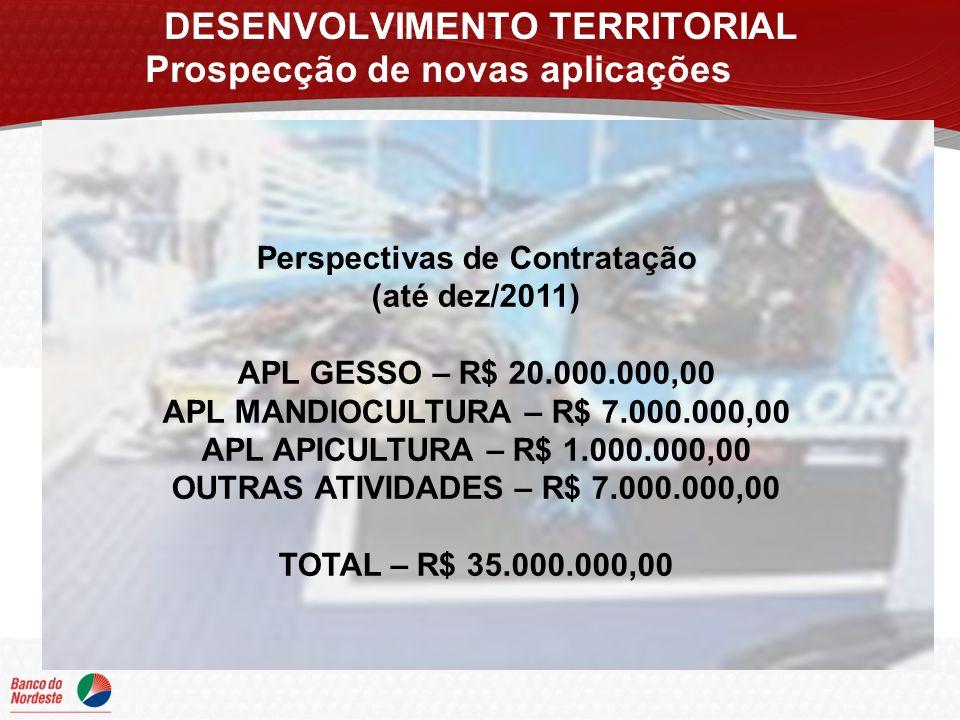 DESENVOLVIMENTO TERRITORIAL Prospecção de novas aplicações Perspectivas de Contratação (até dez/2011) APL GESSO – R$ 20.000.000,00 APL MANDIOCULTURA – R$ 7.000.000,00 APL APICULTURA – R$ 1.000.000,00 OUTRAS ATIVIDADES – R$ 7.000.000,00 TOTAL – R$ 35.000.000,00