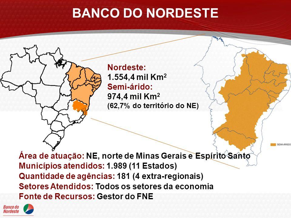 BANCO DO NORDESTE Nordeste: 1.554,4 mil Km 2 Semi-árido: 974,4 mil Km 2 (62,7% do território do NE) Área de atuação: NE, norte de Minas Gerais e Espírito Santo Municípios atendidos: 1.989 (11 Estados) Quantidade de agências: 181 (4 extra-regionais) Setores Atendidos: Todos os setores da economia Fonte de Recursos: Gestor do FNE
