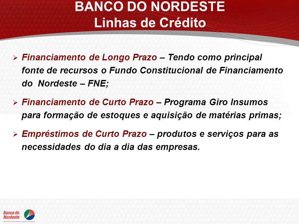 Financiamento de Longo Prazo – Tendo como principal fonte de recursos o Fundo Constitucional de Financiamento do Nordeste – FNE; Financiamento de Curt