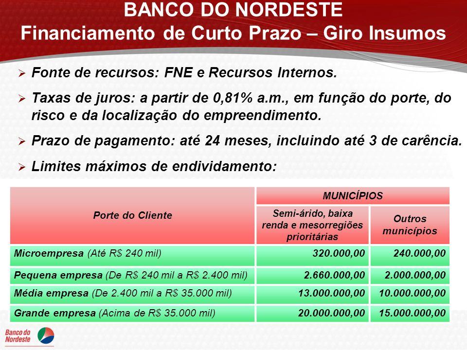 Fonte de recursos: FNE e Recursos Internos. Taxas de juros: a partir de 0,81% a.m., em função do porte, do risco e da localização do empreendimento. P