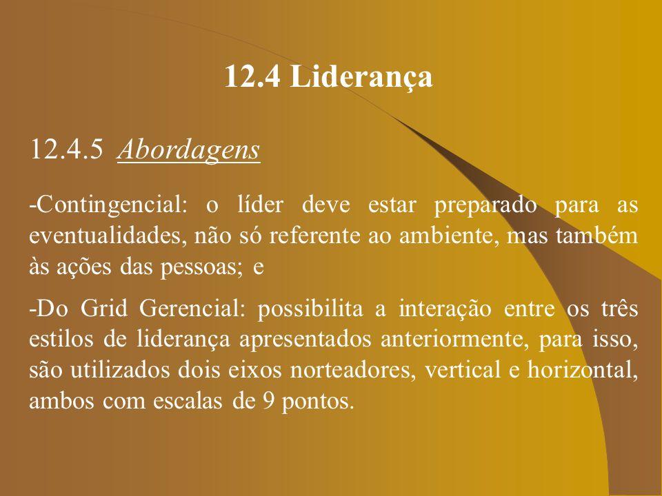12.4 Liderança 12.4.5 Abordagens -Do Grid Gerencial (cont.)