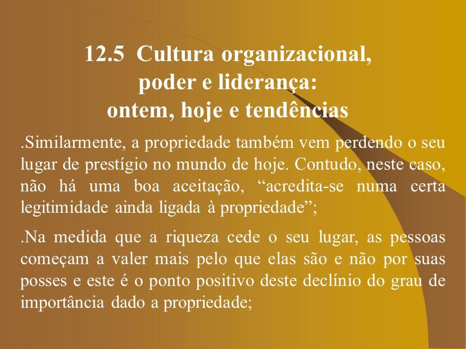 12.5 Cultura organizacional, poder e liderança: ontem, hoje e tendências.Portanto, se a organização é a fonte de poder que está em evidência no momento, nada mais lógico que se preocupar com a cultura dela, no sentido do poder das organizações ser exercido por elas mesmas, independentemente de quem ocupe seus cargos; e