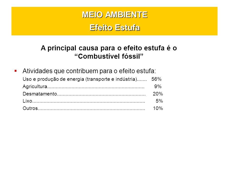 MEIO AMBIENTE Efeito Estufa A principal causa para o efeito estufa é o Combustível fóssil Atividades que contribuem para o efeito estufa: Uso e produç