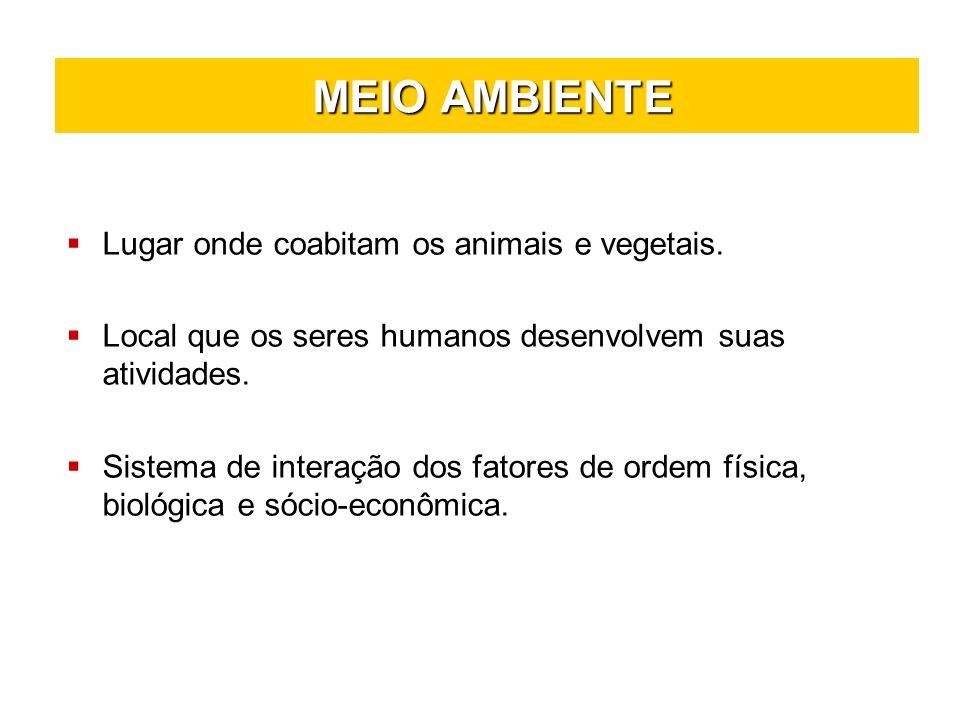 MEIO AMBIENTE MEIO AMBIENTE Lugar onde coabitam os animais e vegetais. Local que os seres humanos desenvolvem suas atividades. Sistema de interação do