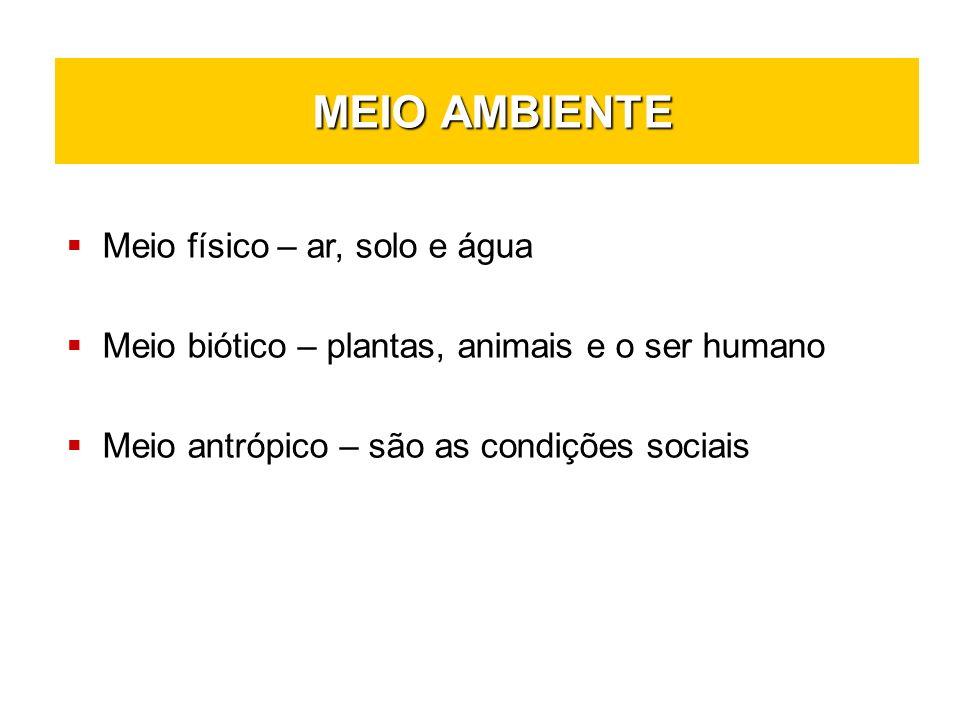 MEIO AMBIENTE MEIO AMBIENTE Meio físico – ar, solo e água Meio biótico – plantas, animais e o ser humano Meio antrópico – são as condições sociais