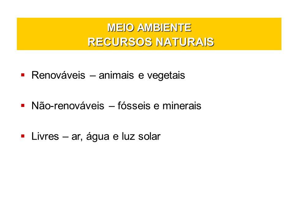 MEIO AMBIENTE RECURSOS NATURAIS Renováveis – animais e vegetais Não-renováveis – fósseis e minerais Livres – ar, água e luz solar