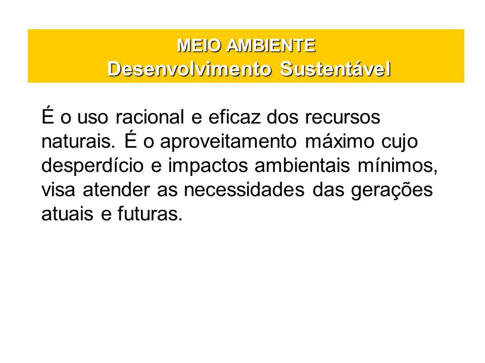 MEIO AMBIENTE Desenvolvimento Sustentável É o uso racional e eficaz dos recursos naturais. É o aproveitamento máximo cujo desperdício e impactos ambie