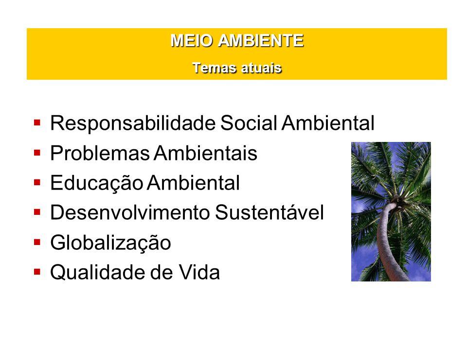 MEIO AMBIENTE Temas atuais Responsabilidade Social Ambiental Problemas Ambientais Educação Ambiental Desenvolvimento Sustentável Globalização Qualidad